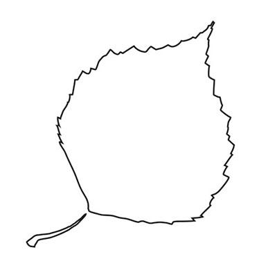 herbstkissen-blatt