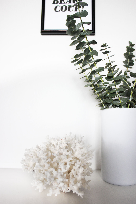 Deko mit Eukalyptus und einer weißen Koralle.