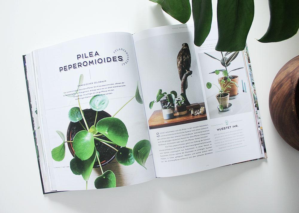"""Die neuen Bücher vom Callwey-Verlag """"Best of Interior Blogs"""" und """"Wohnen in Grün"""""""