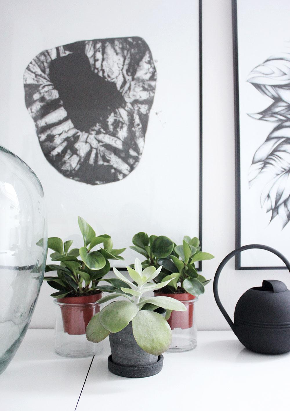 Pflanzendeko auf dem Schreibtisch und Gießkanne von House Doctor