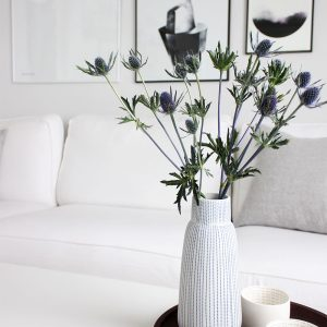 Wie weiße Möbel weiß bleiben und ich meine Lieblingskleidung pflege - zwei super Helfer!
